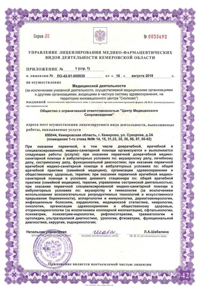 Лицензия ЛО-42-01-005539